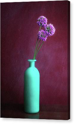 Alliums Canvas Print - Allium Medusa Flower by Tom Mc Nemar