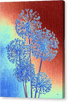 Canvas Print featuring the mixed media Alluring Allium Abstract by Will Borden
