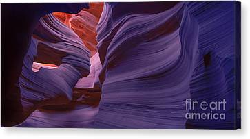 Sculpted Canvas Print - Alluring Beauty - Fluorescent by Marco Crupi