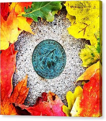 Alma College Seal Canvas Print