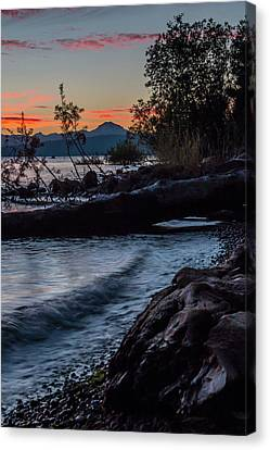 Almanor Driftwood Canvas Print