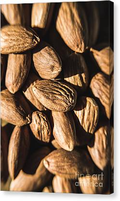 Canvas Print featuring the photograph Almond Nuts by Jorgo Photography - Wall Art Gallery
