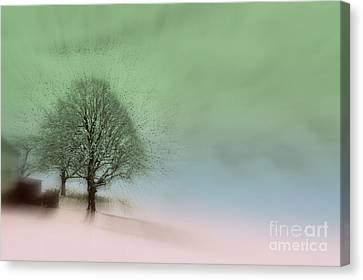Almost A Dream - Winter In Switzerland Canvas Print by Susanne Van Hulst