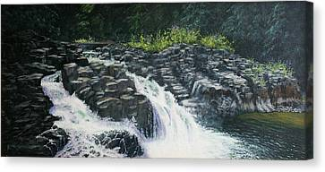 Almost Home - Lucia Falls Canvas Print by Ron Smothers