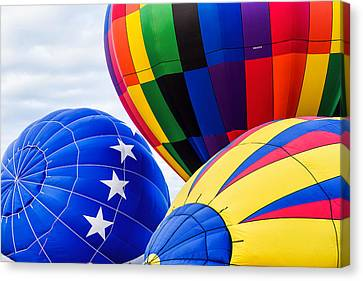 Almost Ready To Fly Canvas Print by Mary Jo Allen