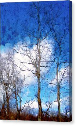 Almost Spring Canvas Print by Spyder Webb