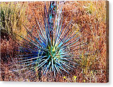 Aloe Vera In Meadow Canvas Print by Mariola Bitner