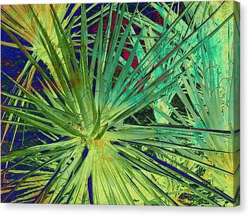 Aloe Vera Plant Canvas Print by Susanne Van Hulst