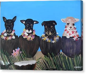 Aloha Teacup Chihuahuas Canvas Print by Aleta Parks