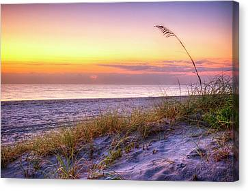 Canvas Print featuring the photograph Alone At Dawn by Debra and Dave Vanderlaan
