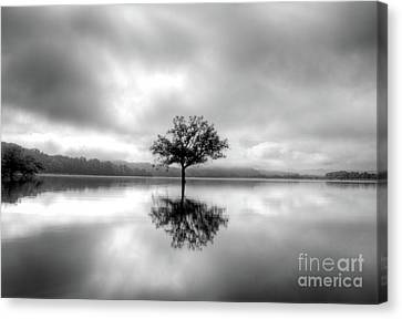 Canvas Print featuring the photograph Alone Bw by Douglas Stucky
