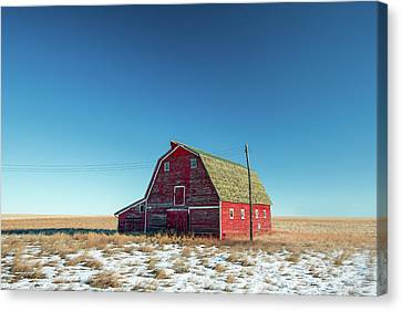 Alone In The Middle Canvas Print by Todd Klassy