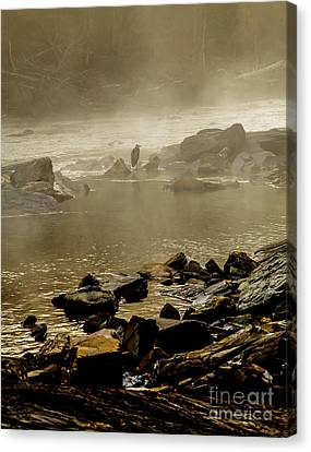 Canvas Print featuring the photograph Alone In The Mist by Iris Greenwell