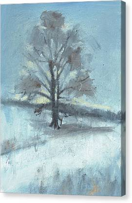 Alone In Winter Canvas Print by Spencer Meagher