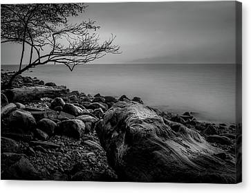 Alone On Spanish Banks Canvas Print