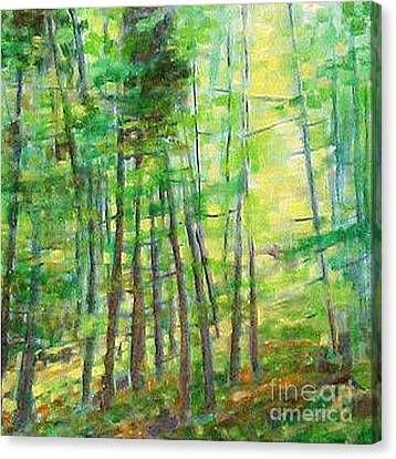 Along Buckslide Road Canvas Print by Karen Sloan