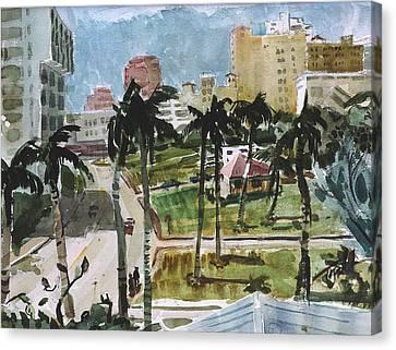 Along Flagler Drive Canvas Print