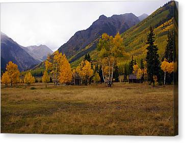 Along The Alpine Loop 2 Canvas Print by Marty Koch