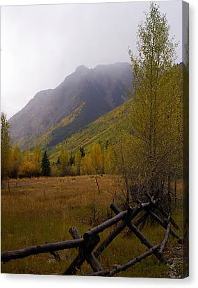 Along The Alpine Loop Canvas Print by Marty Koch