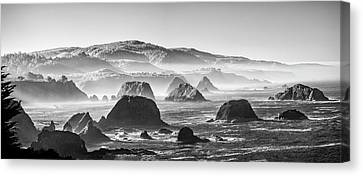 Along The California Coast Canvas Print by Jon Glaser
