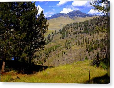 Along The Hell Roaring Creek Trail Canvas Print by Marty Koch