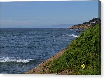 Along The Pacific Coast  Canvas Print by Brianna Culbertson