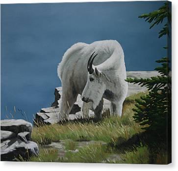 Along The Ridge Canvas Print by Jennifer Batey