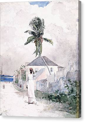 Hands Behind Head Canvas Print - Along The Road   Bahamas 1885 by Winslow Homer
