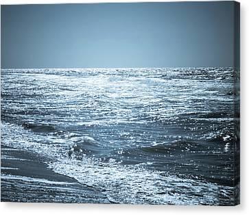 Along The Shore Canvas Print by Wim Lanclus