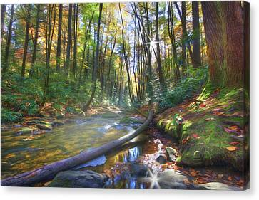 Canvas Print featuring the digital art Along The Trail In Georgia by Sharon Batdorf