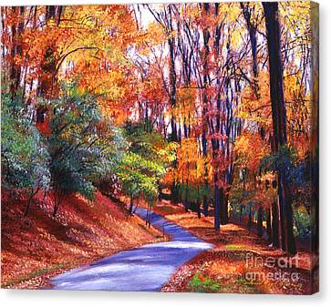 Along The Winding Road Canvas Print by David Lloyd Glover