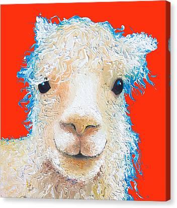 Llama Canvas Print - Alpaca Painting On Red  by Jan Matson