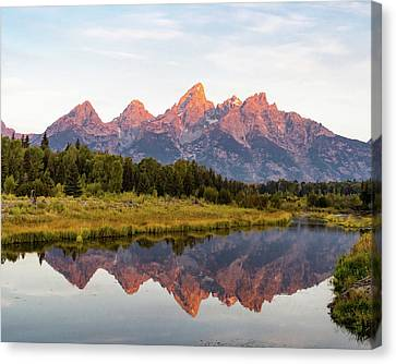 Alpen Glow Canvas Print by Mary Hone