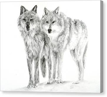 Canvas Print featuring the drawing Alphas by Meagan  Visser