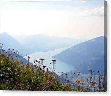 Alpine Flora On Top Of Schynige Platte Canvas Print