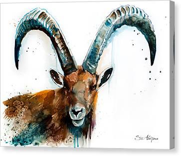 Alpine Canvas Print - Alpine Ibex  by Slavi Aladjova