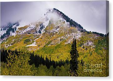Canvas Print featuring the photograph Alpine Loop Autumn Storm - Wasatch Mountains  by Gary Whitton