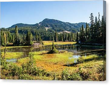 Alpine Meadows - 1 Canvas Print
