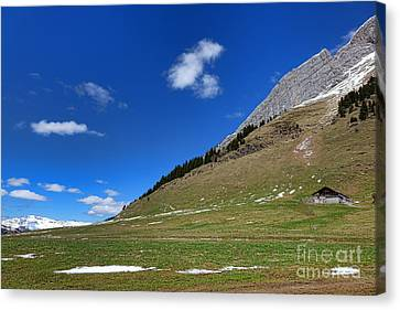 Ledge Canvas Print - Alpine Spring by Olivier Le Queinec
