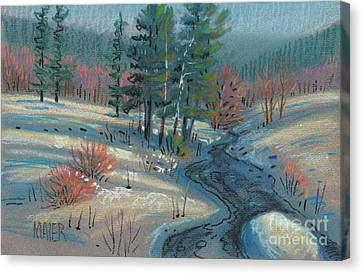Alpine Stream Canvas Print by Donald Maier