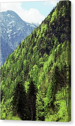 Alpine View In Green Canvas Print by Brooke T Ryan