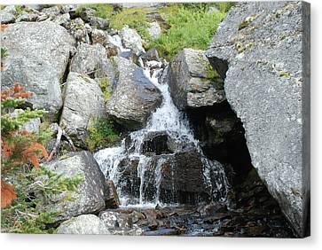 Alpine Waterworks Canvas Print