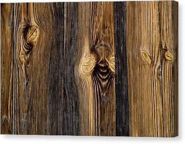 Alpine Wood Canvas Print by Frank Tschakert