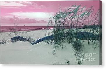Alternate Beachscape  Canvas Print by Rachel Hannah