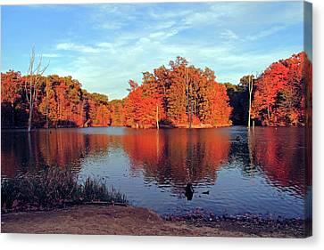 Alum Creek Landscape Canvas Print by Angela Murdock