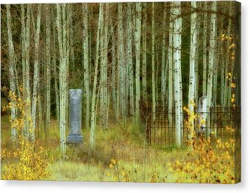 Canvas Print featuring the photograph Alvarado Cemetery 41 by Marie Leslie