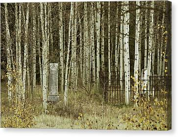 Canvas Print featuring the photograph Alvarado Cemetery 42 by Marie Leslie