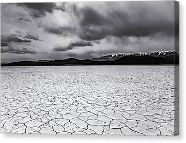 Canvas Print featuring the photograph Alvord Desert by Cat Connor