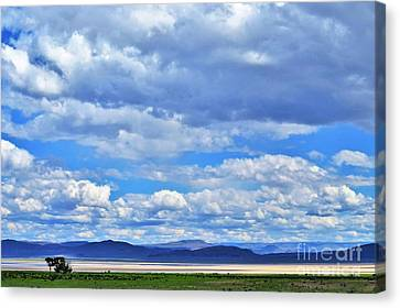 Sky Over Alvord Playa Canvas Print