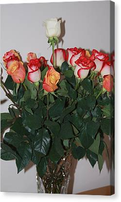 Canvas Print featuring the photograph Always A Rose by Vadim Levin